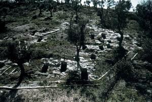Geografia. Demografia. La gran extensió de la necròpolis del Puig des Molins és una prova de la nombrosa població de la ciutat en època púnica. Foto: cortesia del Museu Arqueològic d´Eivissa i Formentera.