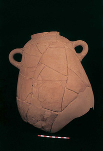 Època feniciopúnica. Àmfora fenícia occidental trobada a sa Caleta. Foto: Joan Ramon Torres.