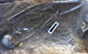 Tomba col·lectiva d´època tardopúnica excavada el 1994 a la finca de ca n´Eloi. Foto. Joan Ramon Torres.