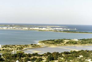 L´estany dels Flamencs, nom amb què també es designava l´estany Pudent de Formentera. Foto Pins.