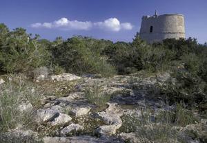 Formentera. Època contemporània. Des de la torre des Pi des Català, milicians de Formentera aconseguiren rebutjar, el 1813, quaranta francesos desembarcats d´un xabec corsari. Foto: David García Jiménez.