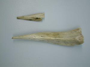 Punta de sageta i punxó de l´edat del bronze trobats a la cova des Fum. Foto: Museu Arqueològic d´Eivissa i Formentera.