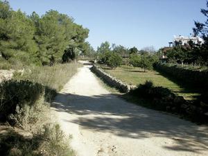 Una vista de la comarca des Fumeral amb el torrent del mateix nom, a l´esquerra. Foto: Felip Cirer Costa.