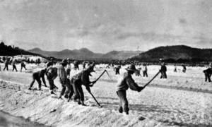 El Gremi de la gent de la mar també regulava la càrrega dels vaixells de sal, en l´extracció de la qual treballava un bon contingent de persones de tots els indrets d´Eivissa. Foto: Viñets / Arxiu Històric Municipal d´Eivissa.