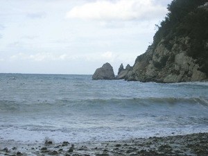 El còdol Gros, al port de Sant Miquel. Foto: Felip Cirer Costa.