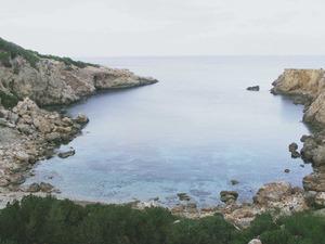 La cala de Jonc, a tramuntana de la costa de Sant Vicent de sa Cala. Foto: Sofia Vuibert.
