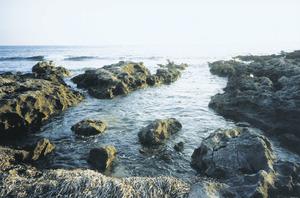 La regana de cala Llenya, al vessant meridional de la Mola de Formentera. Foto: Vicent Ferrer Mayans.