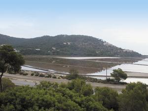 Zona on es trobava l´antic estanyol de Llevant, a la regió Petita de les salines d´Eivissa. Foto: Felip Cirer Costa.