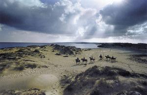 La platja de Llevant, al vessant de llevant de la punta des Trucadors, Formentera. Foto: Beni Trutmann.
