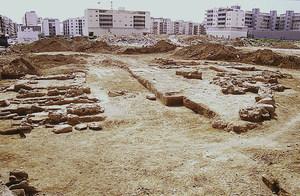 Vista general des del N del jaciment arqueològic de l´hort des Llimoners. Foto: Joan Ramon Torres.