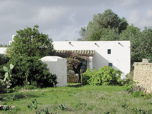 Can Mariano d´en Simó, al cap de Barbaria, Formentera. Foto: Marià Castelló Martínez.