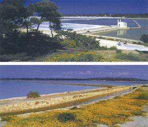 Dues vistes fotogràfiques de les mateixes salines. Foto: Beni Trutmann.