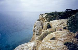 El cingle de ses Mates, vora la punta Roja, al massís de la Mola, Formentera. Foto: Vicent Ferrer Mayans.