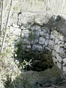 La font des Murtar, a la vénda de Peralta, del poble de Sant Carles de Peralta. Foto: Felip Cirer Costa.
