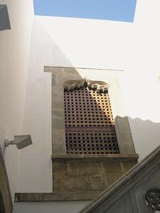 Finestra del pati de la casa Laudes, en què hi ha el Museu dels Pintors Puget. Foto: Jordi H. Fernández Gómez.