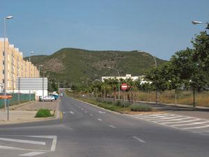 El puig d´en Palau des de Can Misses. Foto: Felip Cirer Costa.
