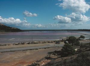Una imatge dels estanys d´en Palla. Foto: Felip Cirer Costa.