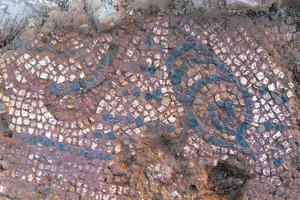 Hort des Palmer. Detall del mosaic recuperat, amb un corn i un fragment d´un peix. Foto: Glenda Julieta Graziani Echávarri.