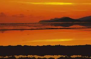 Els estanys des Codolar des del Corb Marí, al Parc Natural de ses Salines d´Eivissa i Formentera. Foto: Vicent Guasch.