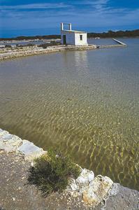 Estanys de les salines d´en Ferrer, Formentera, que formen part del Parc Natural de ses Salines d´Eivissa i Formentera. Foto: Vicent Guasch.