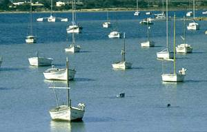 Vaixells fondejats a l´estany des Peix. Les aigües de l´estany també s´han aprofitat per al conreu d´espècies piscícoles i d´organismes destinats a la indústria farmacèutica. Foto: Joan Antoni Riera.