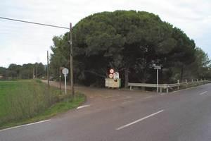 El torrent Petit, al seu pas per la vénda des Poble, de Santa Gertrudis de Fruitera. Foto: Felip Cirer Costa.