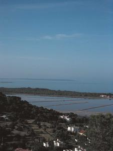 Vista dels estanys coneguts amb el nom de regió Petita, a les Salines d´Eivissa. Foto: Felip Cirer Costa.
