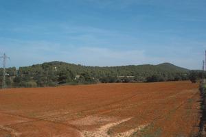 Es Poc Foc, puig situat vora la barda des Calero. Foto: Felip Cirer Costa.