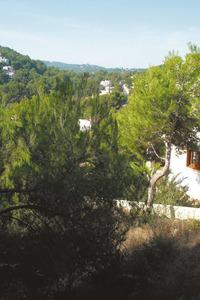 El canal de na Polla, a la vénda de Cala Llonga. Foto: Felip Cirer Costa.