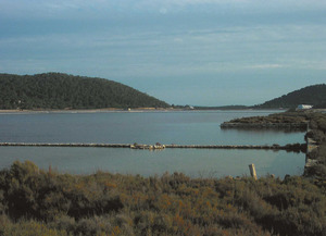 L´estany des Polllet, situat a la zona septentrional de les salines d´Eivissa. Foto: Felip Cirer Costa.
