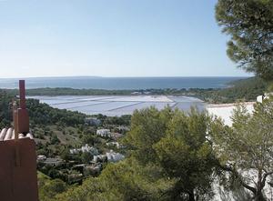 L´estanyol de Ponent amb el temps es fragmentà en estanys més petits. Foto: Felip Cirer Costa.