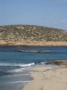 L´escull de Punxes des de les platges de Comte; al fons, l´illa des Bosc. Foto: Felip Cirer Costa.