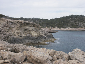 Cala Recuita, a la costa de llevant del poble de Sant Francesc de s´Estany. Foto: Felip Cirer Costa.