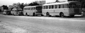 Autobusos de diverses èpoques de l´empresa d´Alfons Ribas Piqué. Foto: arxiu de la família Ribas Piqué.
