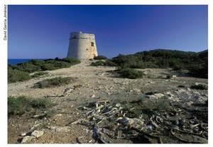La torre de sa Sal Rossa es va concloure com a refugi per als pobladors de la rodalia i, molt especialment, per als que treballaven en la recol·lecció de la sal. Foto: David García Jiménez.