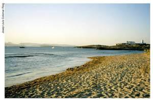 Una vista de la platja de Tramuntana amb el molí des Carregador, a la vénda de ses Salines. Foto: Josep Lluís Colomar Roig.