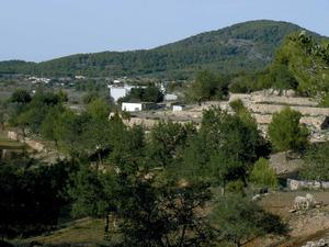 El governador Bernat Joan Salvà i de Biure ja proposà, al s. XV, la concentració del poblament dispers del camp eivissenc. Foto: Ernest Prats Garcia.