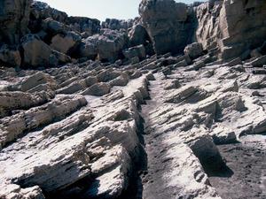 Sant Francesc Xavier. La costa de la punta de sa Pedrera. Foto: Vicent Ferrer Mayans.