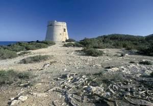 Sant Francesc de s´Estany. La torre de defensa costanera de sa Sal Rossa. Foto: David García Jiménez.