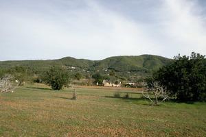 Municipi de Sant Joan de Labritja. Paisatge rural amb la serra de sa Mala Costa al fons. Foto: EEiF.