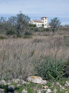 Santa Gertrudis de Fruitera. Un altre exemple de casa molt allunyada del model constructiu típic: can Carrasco, a la vénda de Santa Maria. Foto: EEiF.