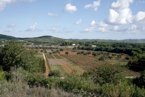 Santa Gertrudis de Fruitera. La plana d´en Vidal des del pujolet de can Marquet; és al NE del poble, el límit amb Sant Llorenç de Balàfia. Foto: EEiF.
