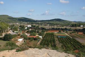 La plana d´en Vidal, a les véndes de sa Picassa i de Parada, del poble de Santa Gertrudis de Fruitera. Foto: Felip Cirer Costa.