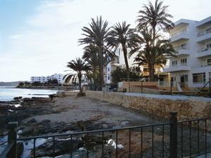 La línia costanera del barri des Viver; vora aquestes palmeres es trobava el viver que ha donat nom a la barriada. Foto: Felip Cirer Costa.