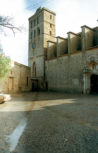Vista de la catedral. Amb el dret d´asil, un símbol del qual és la bola de pedra que hi ha a la porta de la catedral, els fugitius de la justícia es podien acollir a la immunitat dels llocs sagrats. Foto: Ernest Prats Garcia.