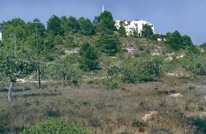 El puig de na Ribes és format per calcàries kimmeridgianes assentades sobre turbidites burdigalianes. Foto: Bartomeu Escandell Prats.