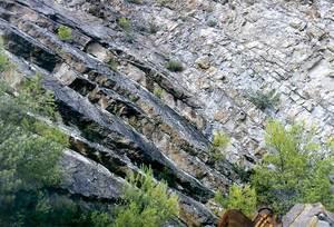 Capbussament de les capes kimmeridgianes de la pedrera de can Xiquet Pou, al NO de l´aeroport. Foto: Bartomeu Escandell Prats.