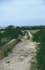 Carrer. El carreró d´en Gall, a Formentera. Foto: Enric Ribes i Marí.