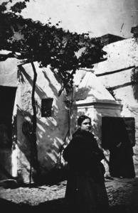 Una imatge on es pot apreciar una manera d´emparralar una parra. Foto Quilis / col·lecció Marià Planells Cardona.