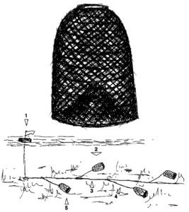 Morenell i filera de morenells: 1 capcer, 2 filera, 3 mare, 4 braçol i 5 morenell. Dibuix: Antoni Prats Calbet.